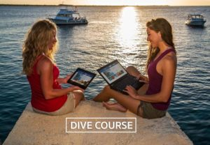 Scuba Diving Course link