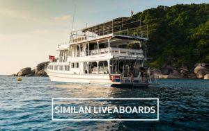 similan liveaboard trips