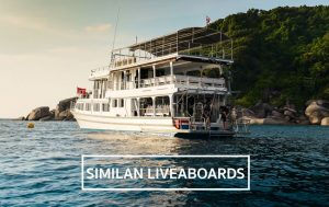 liveaboard-trips-to-similans